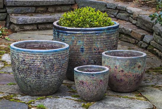 pot garden blue ireland