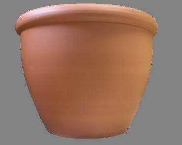 Iris Pot
